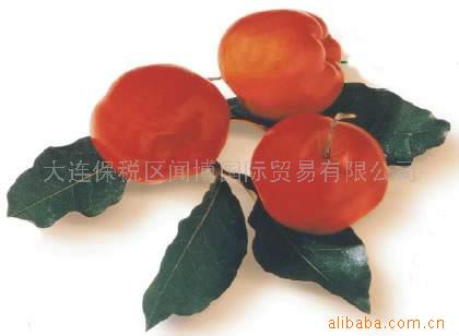 针叶樱桃提取物--巴西原装进口