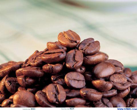 高档巴西18目咖啡生豆