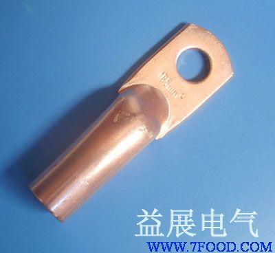 专业生产各种铜接线端子,铜鼻子,双孔铜鼻