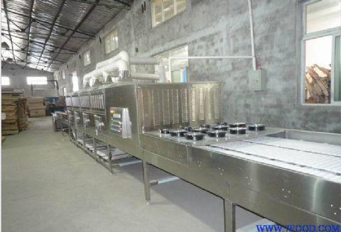 供应 微波木材干燥杀虫设备
