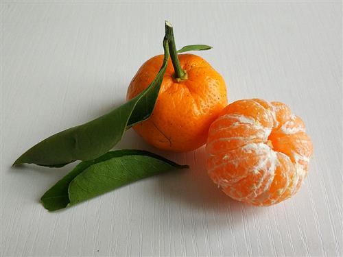 贡桔含糖高味道甜 贡桔的功效与食用禁忌