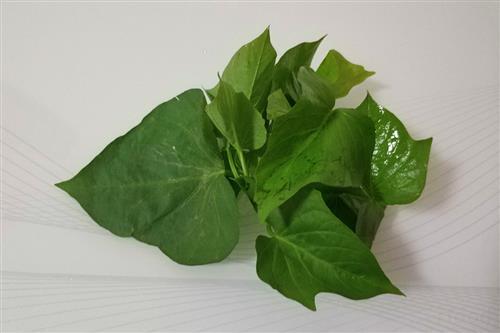红薯叶别再扔掉,它对身体有6个好处,但食用时要注意3点