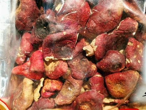 孕妇多吃红菇的好处_饮食问题_饮食指南