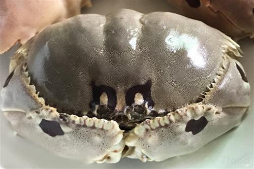 幼儿园制作螃蟹灯笼