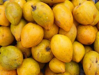 芒果素描图片步骤