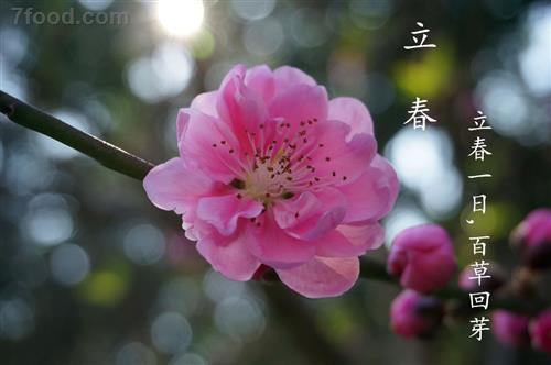 今日立春 立春的习俗与养生方法