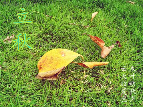 今日立秋,养生做好这几件事,秋冬少生病