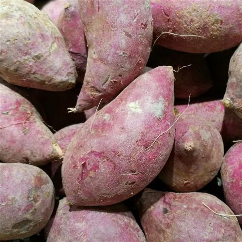 营养价值高功效多 秋季吃红薯好处多