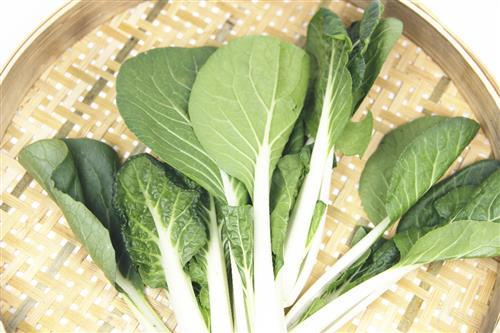 吃生菜能有减肥的效果吗