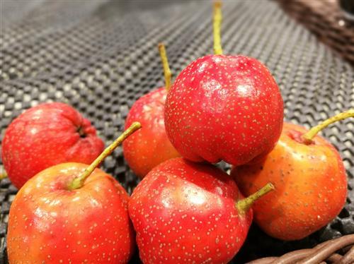 秋季润燥养血7饮食宝典 - 故乡的云 - 泉水叮咚