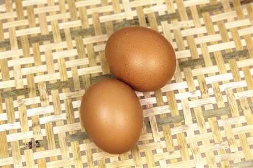 幼儿在鸡蛋上画画图片