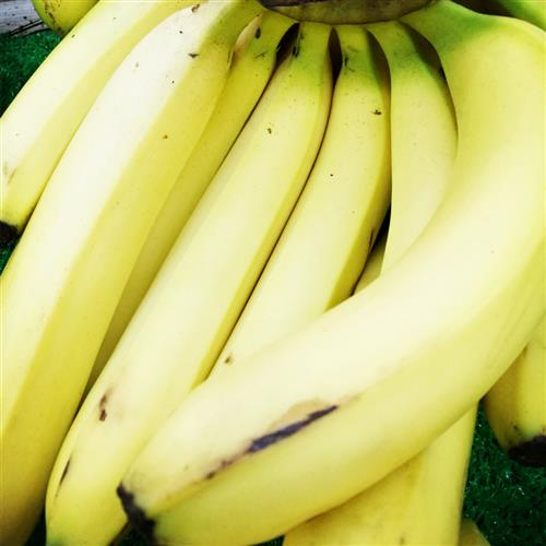 夏季常吃十二种瓜果防百病 - 健康赢台 - 健康赢台博客