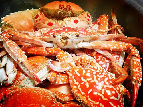 咖喱咖喱钢琴简谱-秋风起,蟹脚痒 秋季螃蟹的10道经典做法