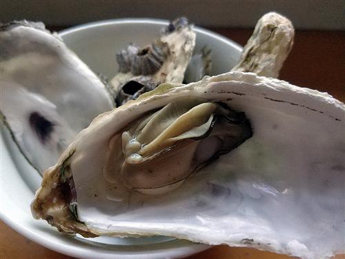 冬季食用生蚝功效多 如何食用最美味