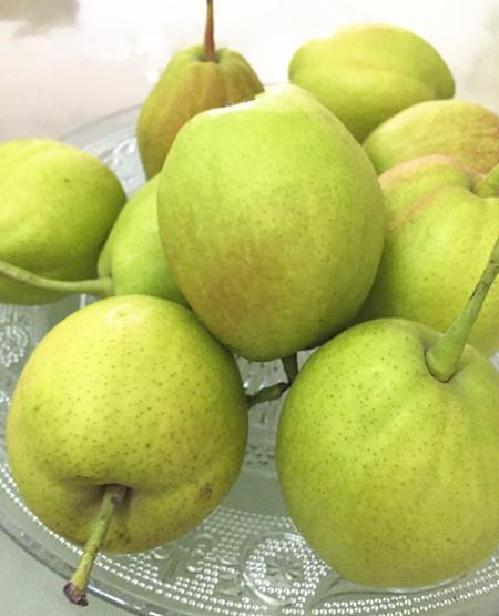 夏季吃梨好处也多 保护心脏清热防癌
