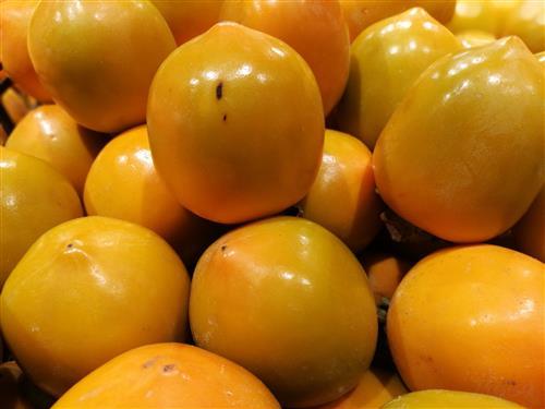 柿子美味好吃 柿子柿饼该如何选购