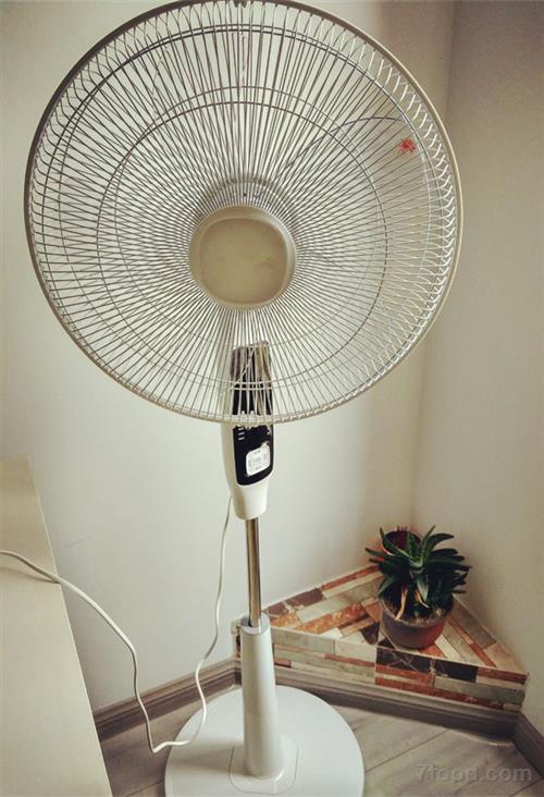 不过很多家庭的电风扇,空调扇,吊扇都积攒了厚厚的油渍以及灰尘,如果