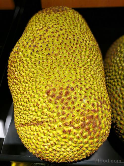 菠萝蜜的饮食禁忌 菠萝蜜核如何食用