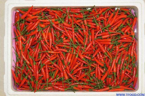 辣椒工厂生产的腌制方法图解