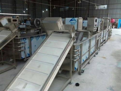 净菜加工生产线中央厨房生产线球茎类蔬菜加工一条线 其他图片