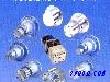 进口齿轮泵