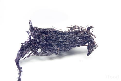 肉桂显微结构手绘图