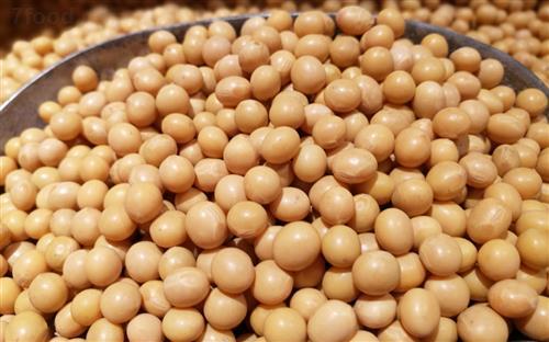 农业农村部:今年大豆补贴标准要高于玉米