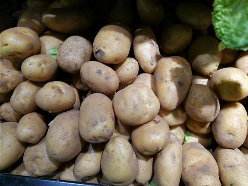 新一輪馬鈴薯即將集中上市 價格或將走低