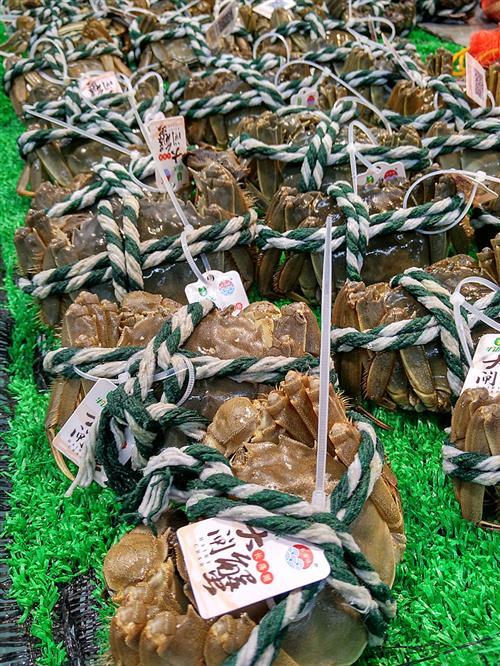 阳澄湖大闸蟹开捕 产量达1300吨