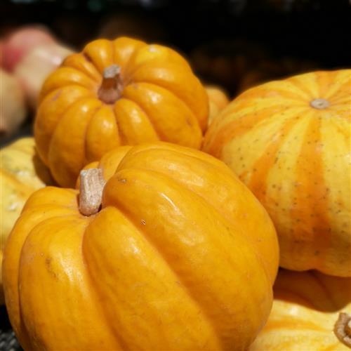 感恩節不能錯過的兩道經典菜品的做法